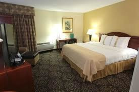 Holiday Inn Charleston Riverview: Luxury King Guestroom