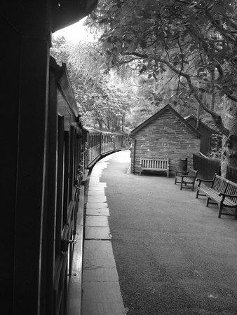 Talyllyn Railway: Dolgoch station