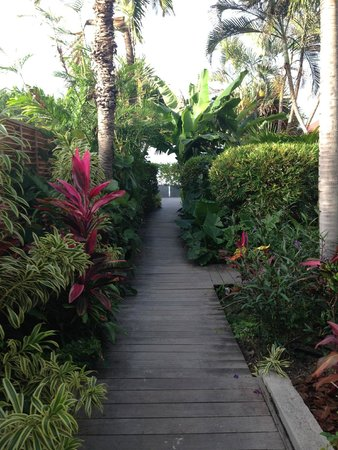 Tom Beach Hotel: Pretty grounds