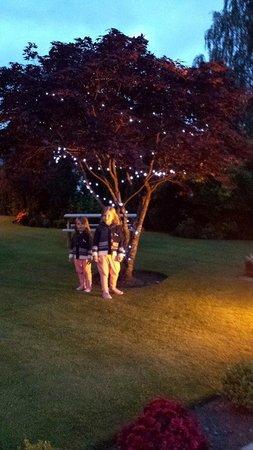 Buttonboss Lodge: Lodge Garden at Night
