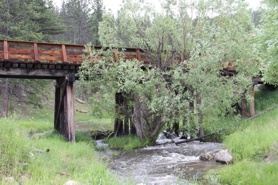 Black Hills Trailside Park Resort: Trout stream...
