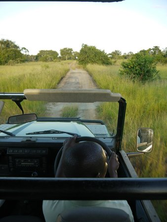 Simply Saadani Camp: Out on safari with Tiso