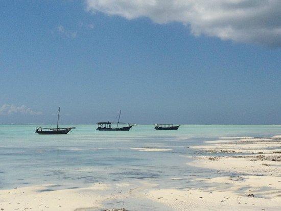 The Zanzibari: Fishing boats dotted on a turquoise sea