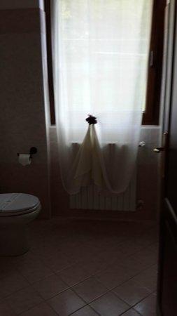 Casa Del Poggio Solivo: Bathroom curtain