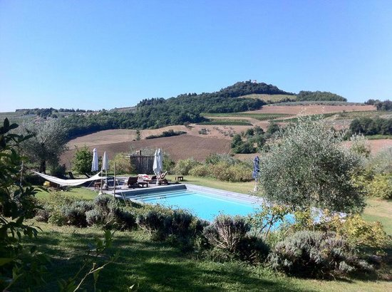 Podere la Querce: A pool in the Tuscany countryside