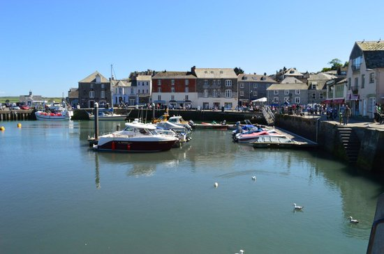 Padstow Harbour: Harbour view