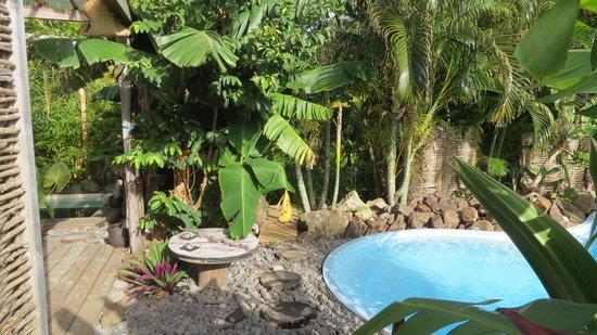 Residence Orcea : Giardino e piscina