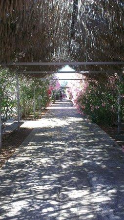 La Giurlita Hotel: sentiero per spiaggia villaggio