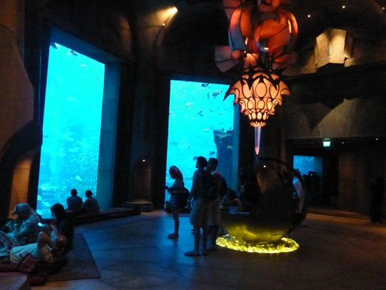 The Lost Chambers Aquarium: Main hall