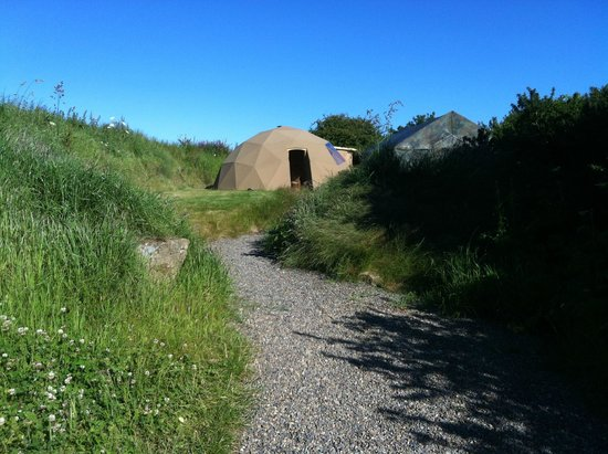 Trellyn Woodland Camping: Our Dome for the week