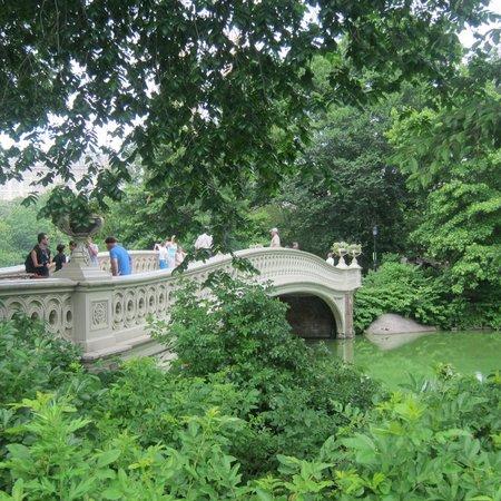 Central Park Sightseeing: Bow Bridge