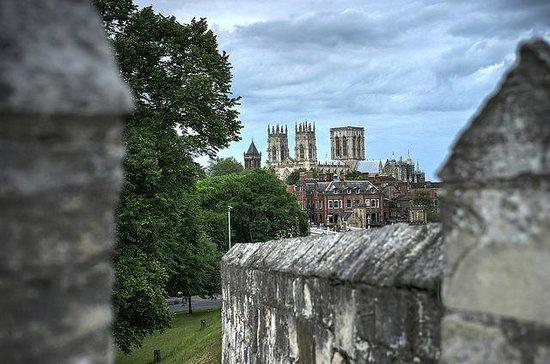 Mur d'enceinte : York Minster from the town wall