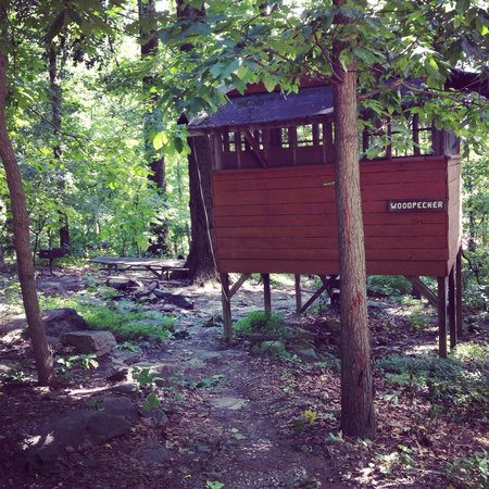 Maple Tree Campground: Woodpecker Treehouse