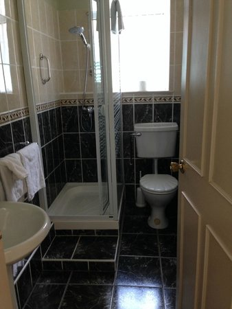 San Antonio : Lovely, updated ensuite bathroom