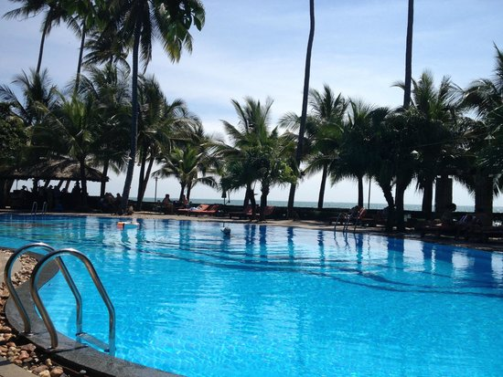 Oriental Pearl Resort : бассейн