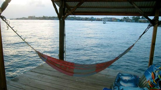 Casa Acuario : View from the hammock- Bocas Town in the distance. You could see the lights at night.