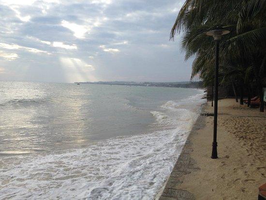 Oriental Pearl Resort : щёлкали при отливе