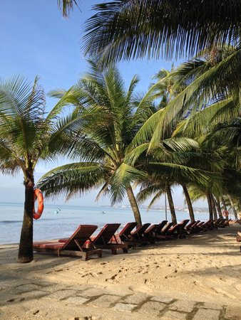 Oriental Pearl Resort : отель
