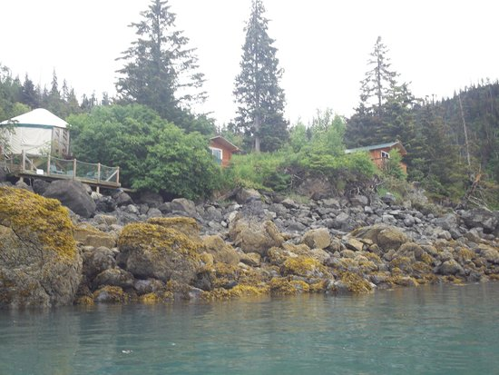 Hideaway Cove Wilderness Lodge : View from water of yurt and cabins