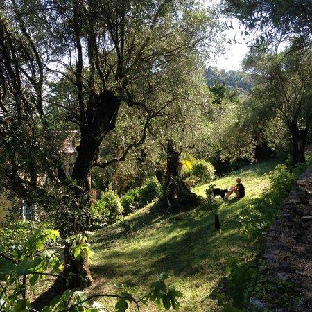 La Rivolte : Back Garden