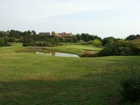 Golf Hotel Ca' Degli Ulivi: green