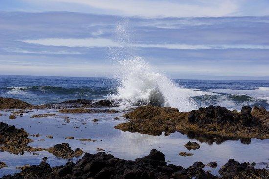 Cape Perpetua Scenic Area: Incoming wave