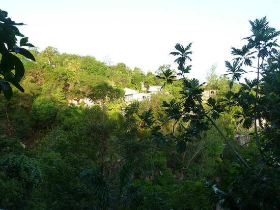 Jah Billy's Irie Ites Guesthouse: View