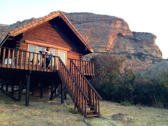 Mount Everest Guest Farm : our log cabin - Witkruisarend