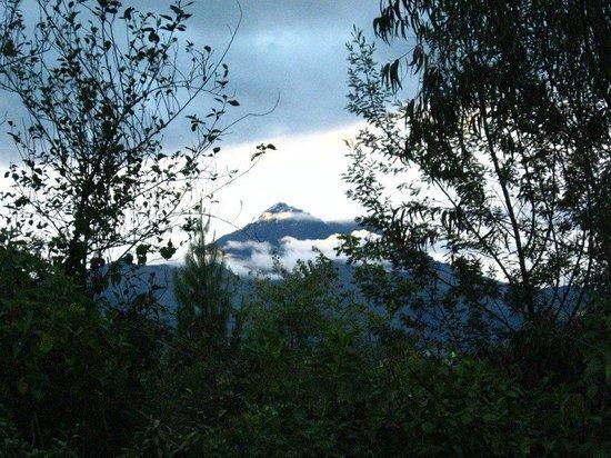 Hostal Aya Huma : Cotacachi volcano, fiew from Aya-Huma
