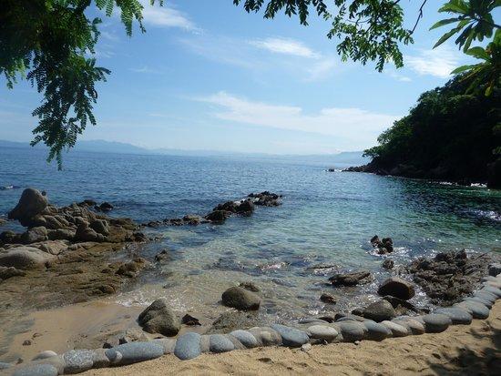 Vallarta Adventures - Las Caletas Beach Hideaway: Just one of views