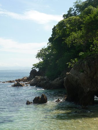 Vallarta Adventures - Las Caletas Beach Hideaway: Another view from a secluded area of the beach
