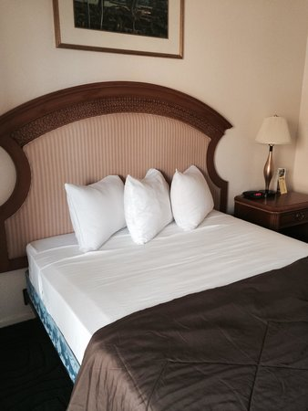 Super 8 Las Vegas Blvd: Bed