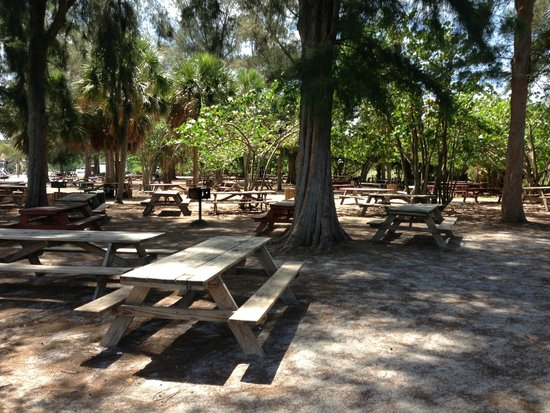 Siesta Beach: Área das churrasqueiras