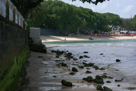 The Club, Barbados Resort and Spa: Rocky