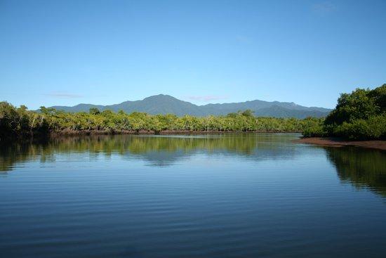 Blackout Sportfishing: Mulgrave River