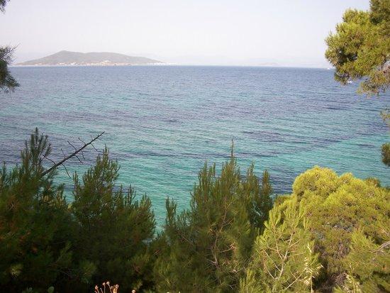 Hotel Danae: View is amazing!