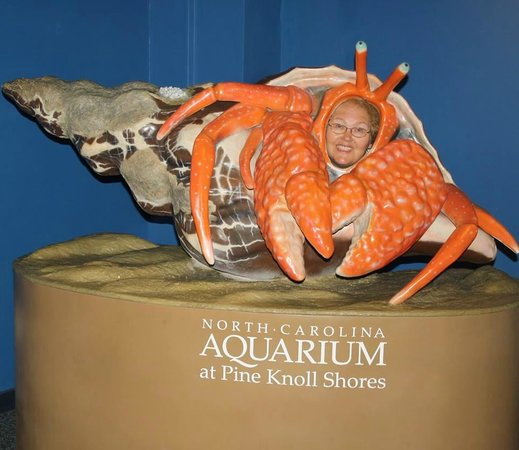 North Carolina Aquarium at Pine Knoll Shores: They call me crabby Patty lol