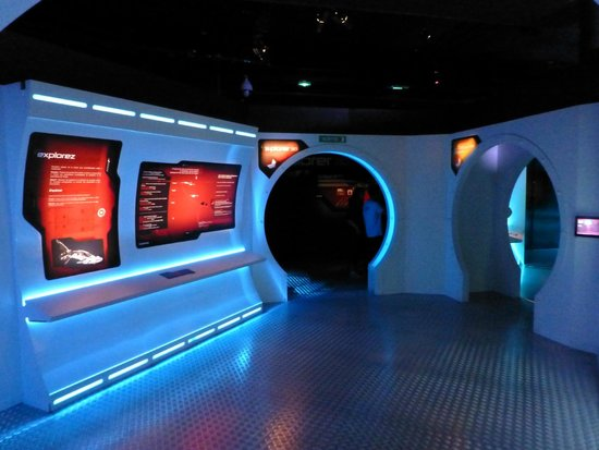 """Aquarium Mare Nostrum : On frôle le parc d'attractions à """"thème"""" mais pas la frénésie au niveau des aquariums"""