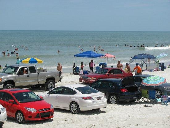 Sea Shells Beach Club : BEACH