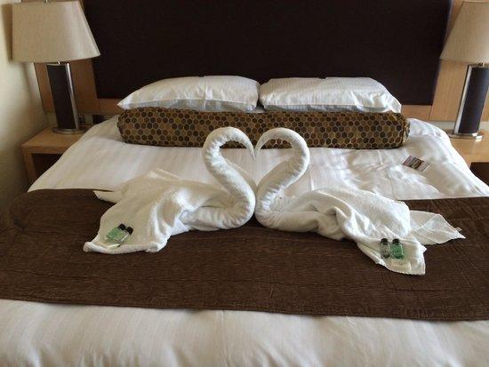Bay Hotel: Swans