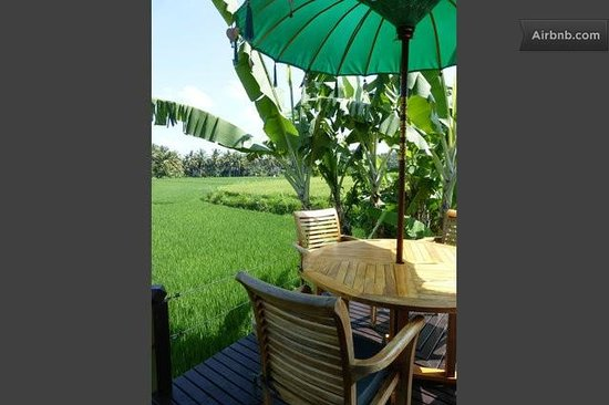 Bali Harmony Villas: View from your room!
