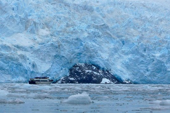Kayak Adventures Worldwide : The glacier was calving like crazy, and it was enormous!