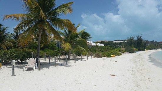 Sapodilla Bay: View 2