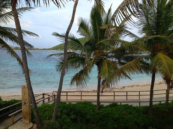 Peter Island Resort and Spa: View from junior suite