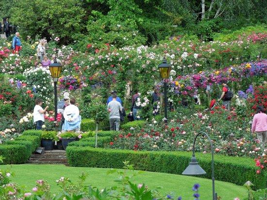 The Butchart Gardens: Butchart Garden