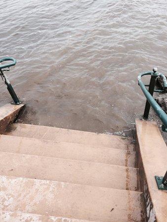 Art on the River, Public Art Display: :)