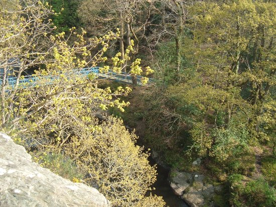 Roe Valley Country Park: Blue bridge from O'Cahans Rok