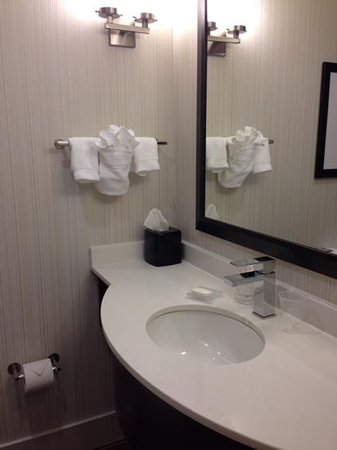 Hilton Garden Inn New York/Manhattan-Midtown East: bathroom