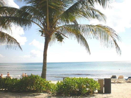 Grand Palladium Kantenah Resort and Spa: more of paradise