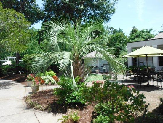 Hampton Inn & Suites Wilmington/Wrightsville Beach: garden area